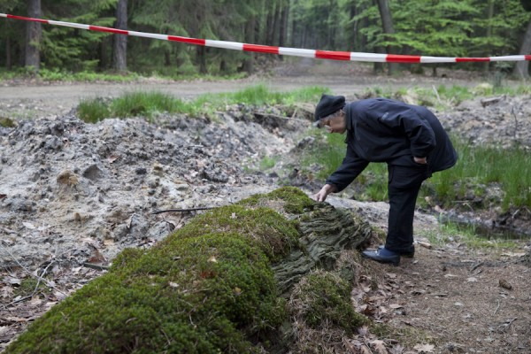"""Reste der bereits etwa seit 100 Jahren umgestürzten Kiefer """"Die Protestantin"""""""
