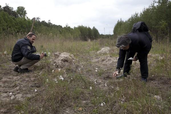 Suche nach bedrohten Arten
