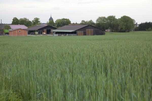 Bauernhof Schulz in Atterwasch